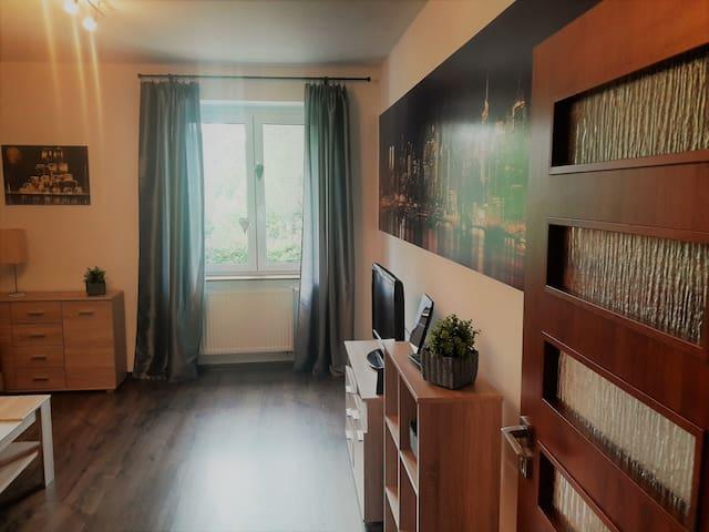 Apartament SM - Stronie Śląskie