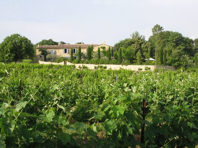 Charming stone house in Provence - Saint-Romain-en-Viennois - Villa