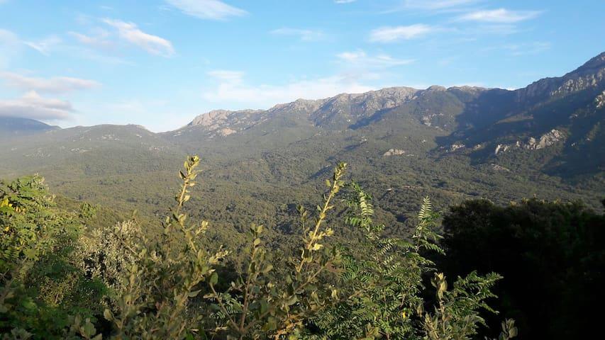 Joli studio au coeur de la montagne