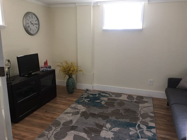 Bright basement apartment- downtown