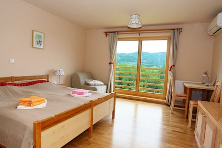 Double room - Spodnja Kostrivnica - Bed & Breakfast