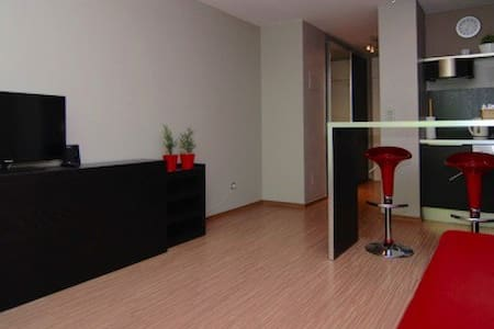 Your 5★ Studio in Bonn! - Bonn - Apartment