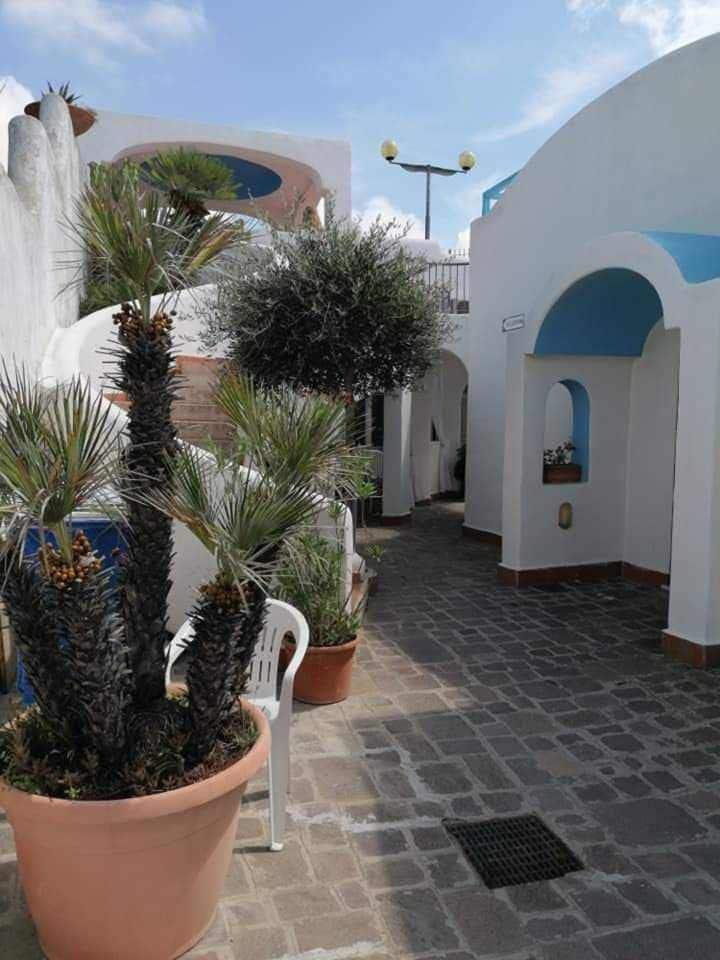 Doppia, terrazzino, senza cucina (Gardenia)
