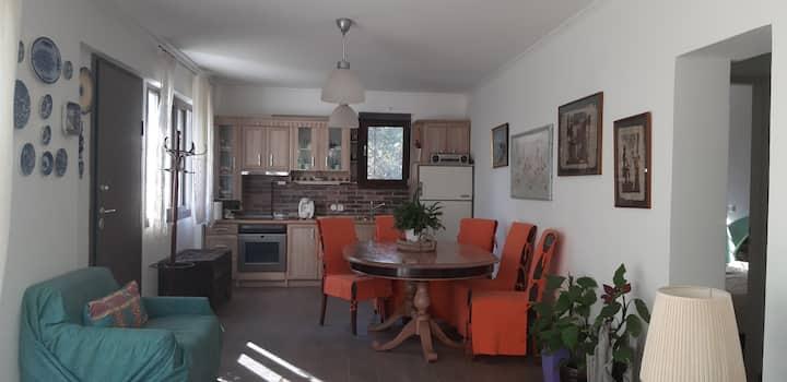Litsa's cozy house