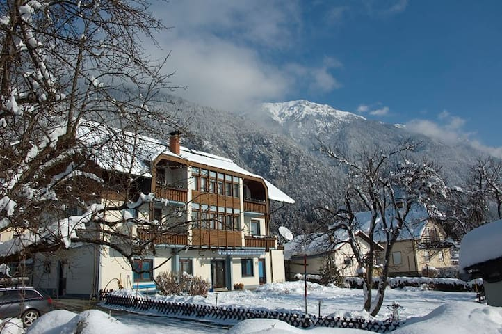 Holiday flat in the middle of the Alps (flat #6) - Presseggersee - Obsługiwany apartament