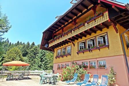 "Ferienhaus ""Fichtenhof am Wasserfall"" - Todtmoos"
