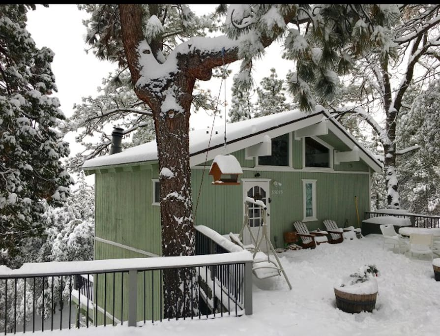 Front of Cabin Snowfall