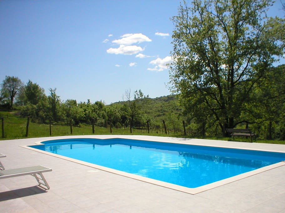 Very large pool 5x10 meters surorunded with great oak tree and olive trees
