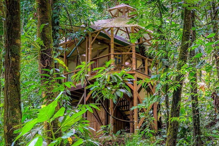 Stunning treetop retreat w/furnished balcony & hammock overlooking the jungle!