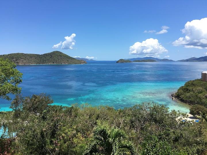St. Thomas 2BR/2BA Spectacular Down Island Views!