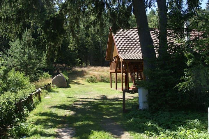 Leśniczówka na Polanie - Sominy