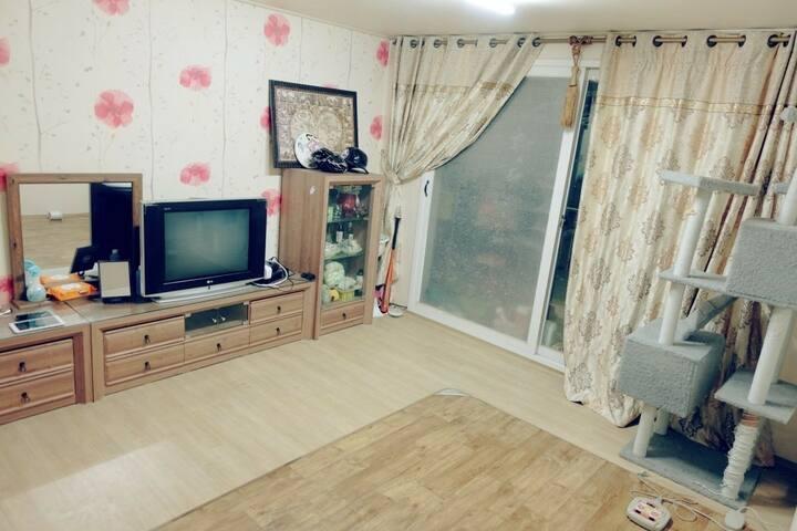 고한역 하이원 셔틀 정류장 도보 5분 깨끗하게 리모델링된 야경이 멋진 방3개 빌라