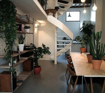 Antwerpen (centrum) - Ház