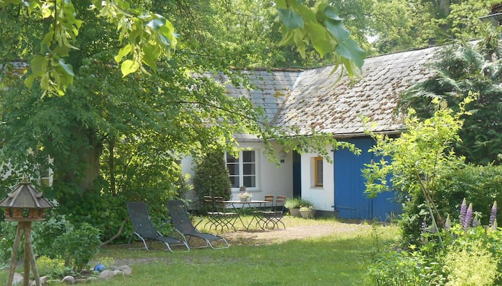 Stechlinsee idyllic cottage  in the woods 2