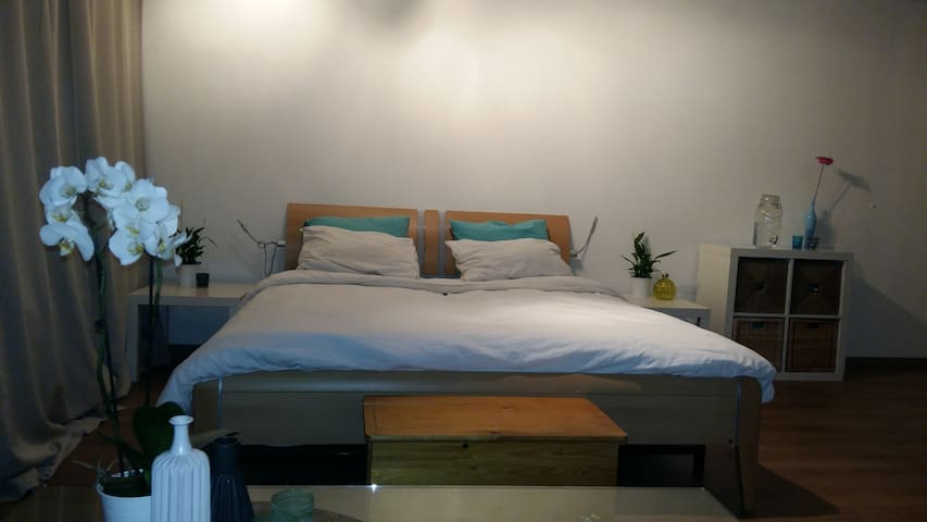 Comfortable 2 persons room in Amsterdam!