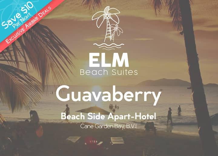 ELM Beach Suites | Beach Front Apart-Hotel