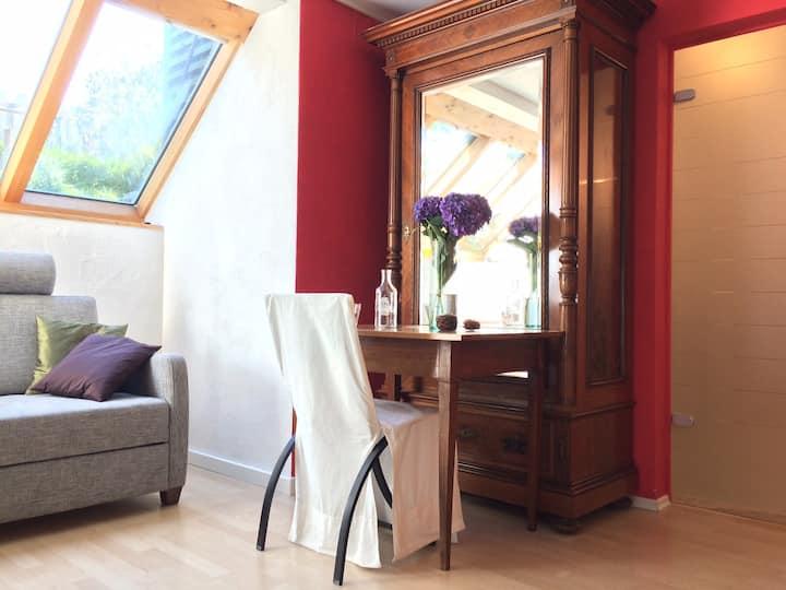 Grosses Zimmer mit Bad, sep. Eingang ohne Küche
