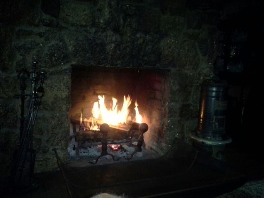 Living room fireplace. If it is cool or damp outside and you would like a fire, not a problem. However I will tend it.