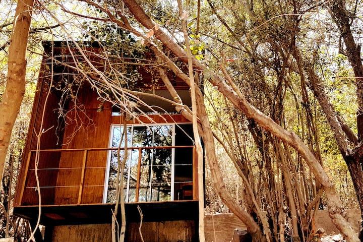 Cabaña refugio, Parque Nacional La Campana,  Olmué