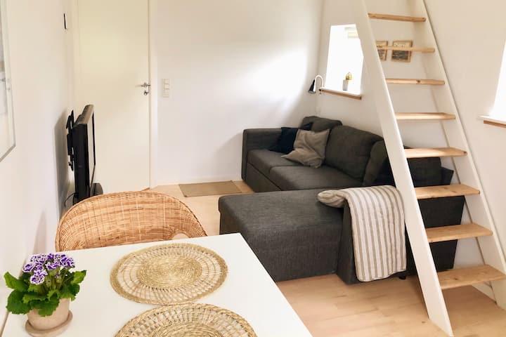 Dejlig lys 1 værelses lejlighed med terrasse.
