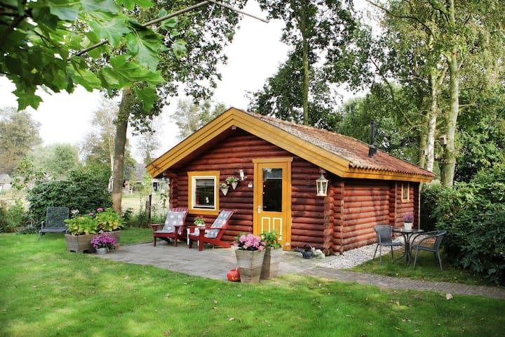 Gîte charmant à Gramsbergen avec forêt à proximité