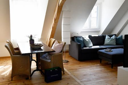 Bright, nice and cosy apartment - Basel - Lakás