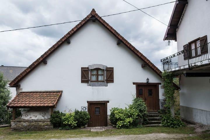 Casa rural ERTEIKOA - Selva de Irati