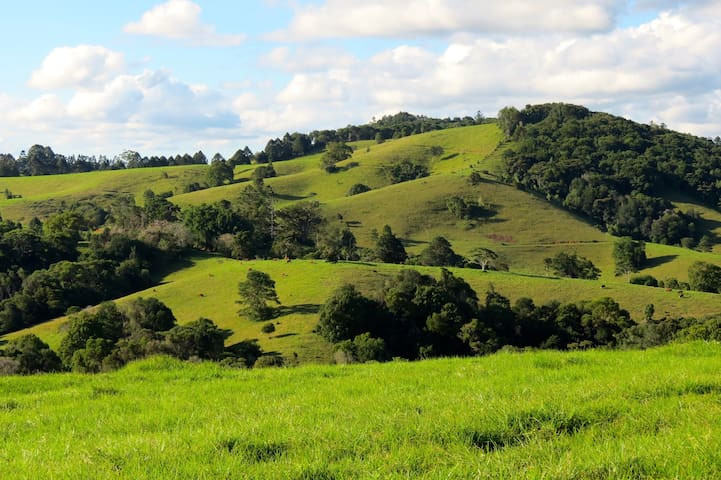 MALENY SPRINGS FARM 100 acres luxurious house 8km