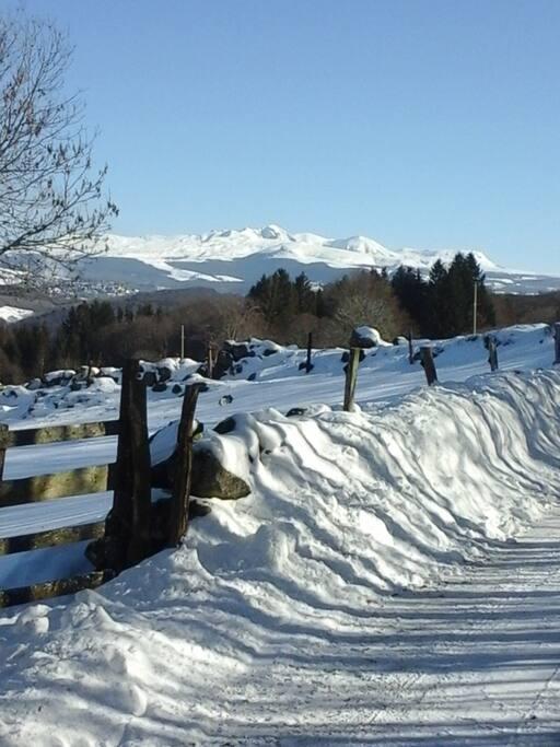 Le Domaine boisé de 10 hectares qui abrite le chalet et le panorama grand large sur le massif du Sancy. A 20 min. des 1ères pistes de ski ...