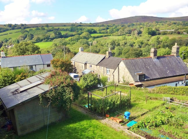 HEART OF DARTMOOR TRADITIONAL COTTAGE