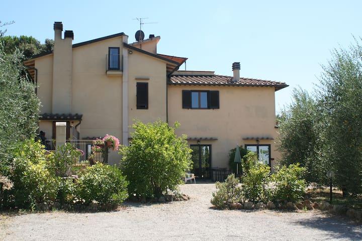 appartamento mimosa - San Gimignano - Daire