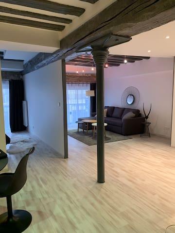 Bel appartement design et confortable hyper centre