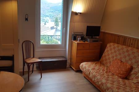 Les Sapins idéal séjour centre du Mont-Dore - Le Mont-Dore - 公寓