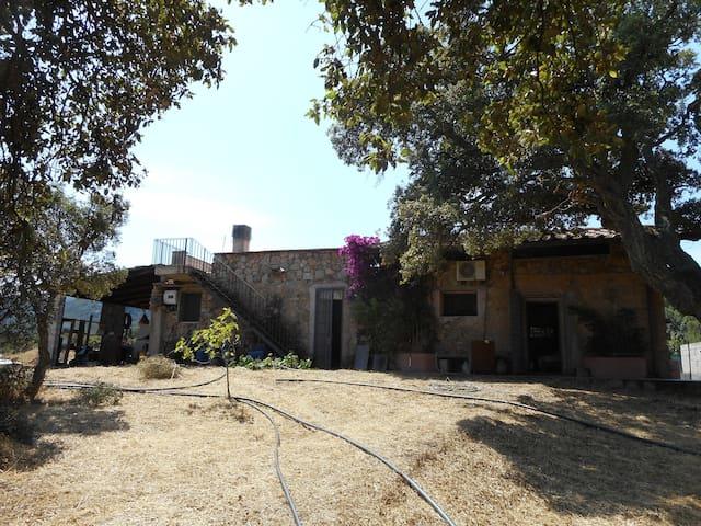 Casa vacanza in Loc. Chirialza - Monti - Haus