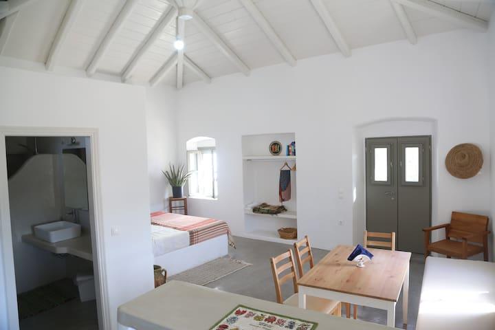 Rouga - bright terrace studio.