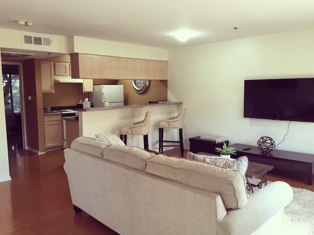 Cool & Spacious by the beach! - Santa Monica  - Apartment