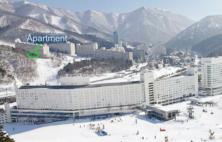 Available for Fuji Rock 2018! Kids U12 ski free!