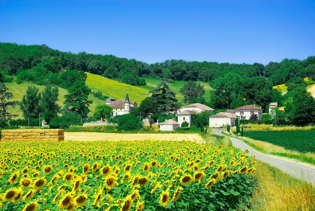 Montjoi, South France