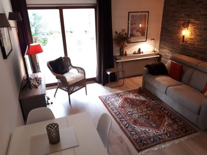 Appartement de charme sur la route du vin d'Alsace