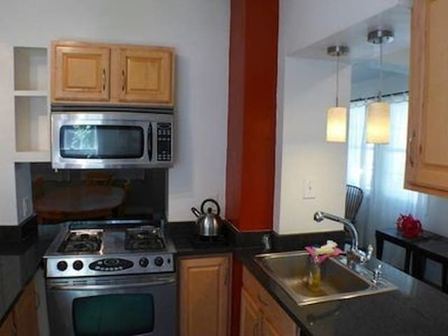 Single Family 4 Bedroom Home in Squirell Hill - Pittsburgh - Huis