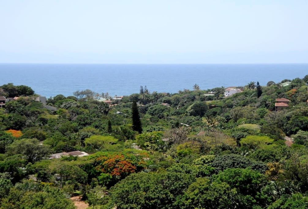 Panoramic view of the Indian ocean and lush valley below...