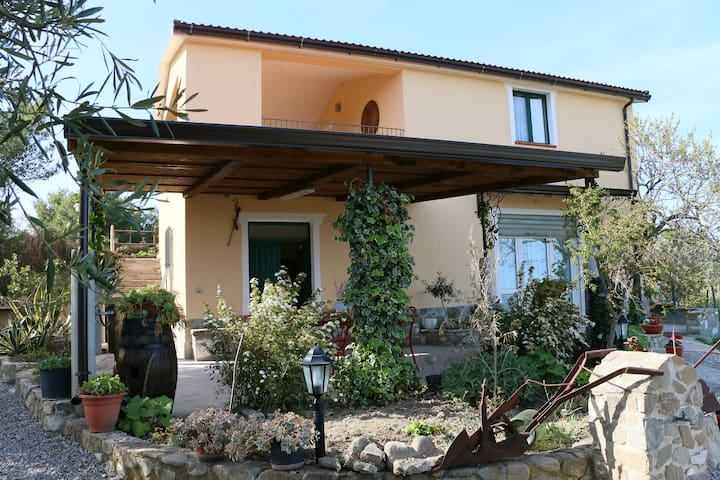 "B&B ""il Vigneto"" splendida vista mare - Albidona - Bed & Breakfast"