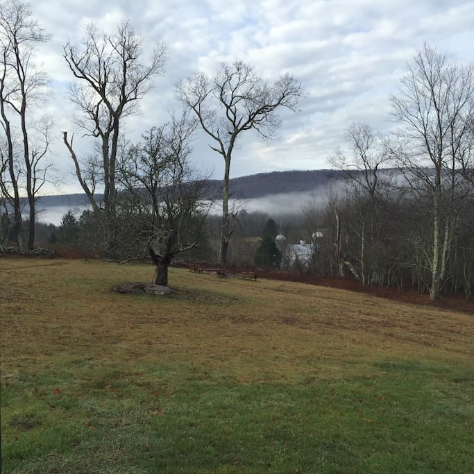 Early morning view from the deck & kitchen window