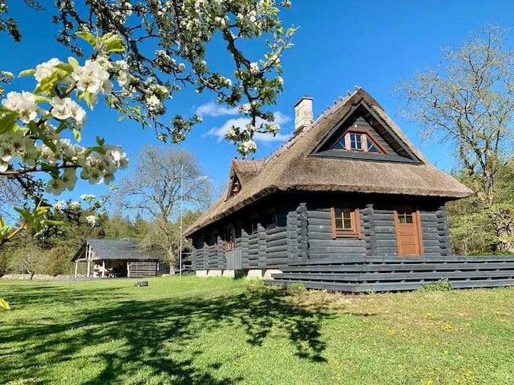 Saaremaa rahu ja vaikus