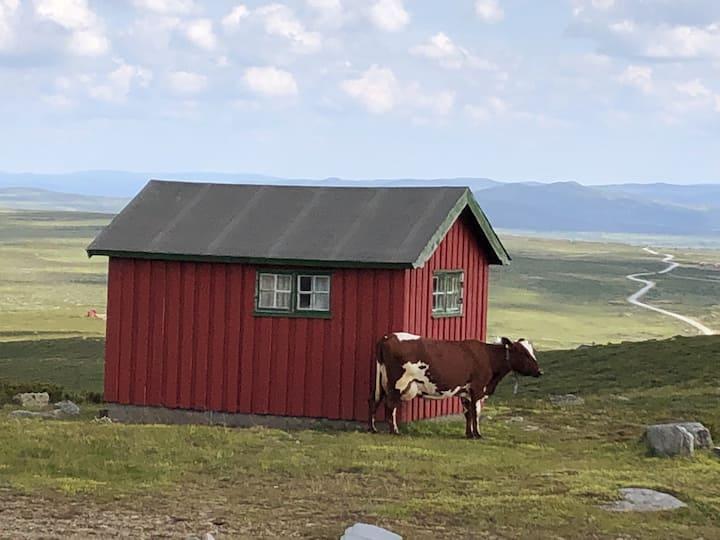 Simple cabin in Kjølastølen, Valdres