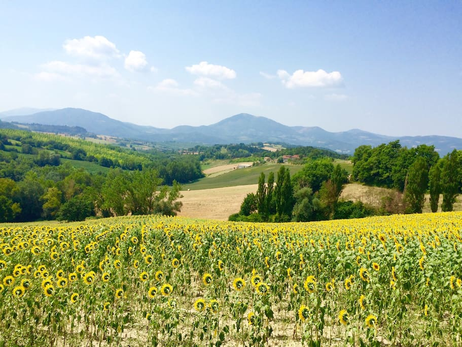 One of many spectacular views from Casale Napoletano with Monte Acuto in the distance