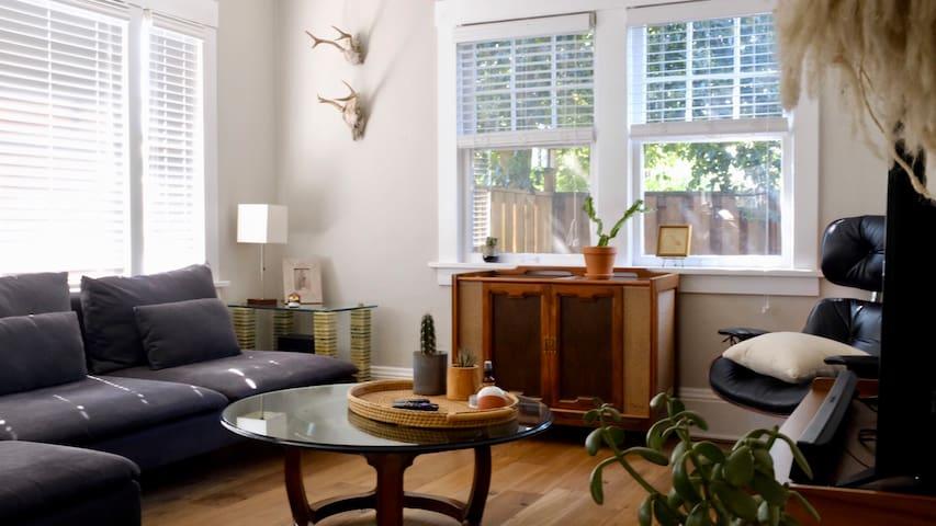 Living room natural light.
