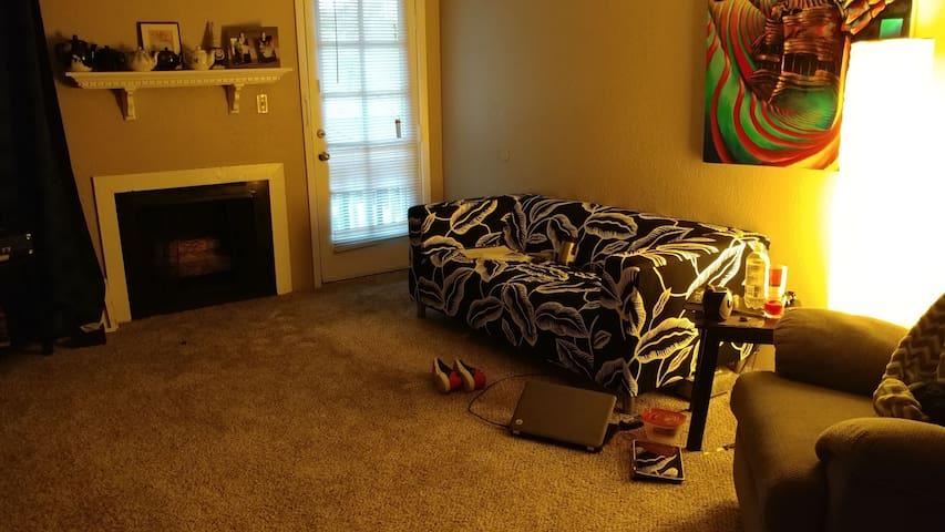 Lovely living room - Kansas City - Apartment