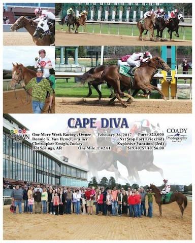 Cape Diva Room