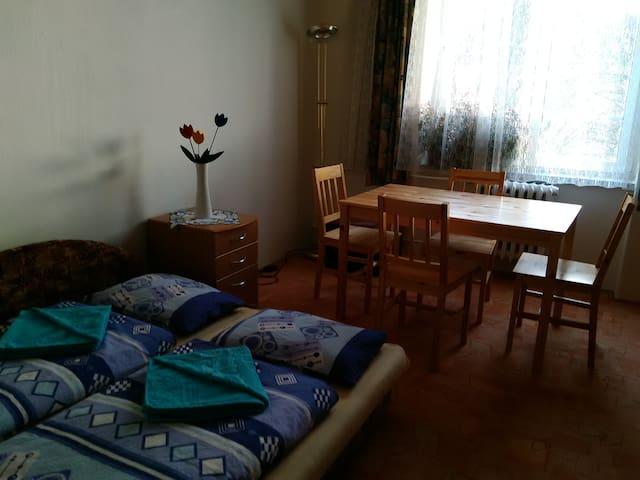 Private room- Karlovy Vary centre